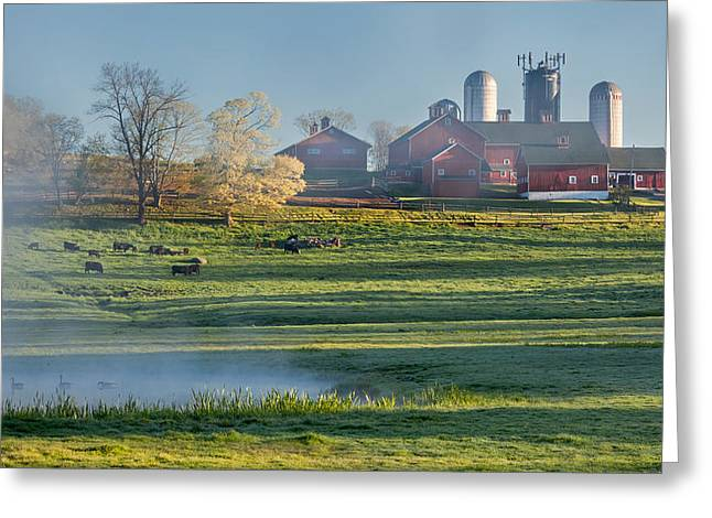 Red Barn Greeting Cards - Foggy Farm Morning Greeting Card by Bill  Wakeley