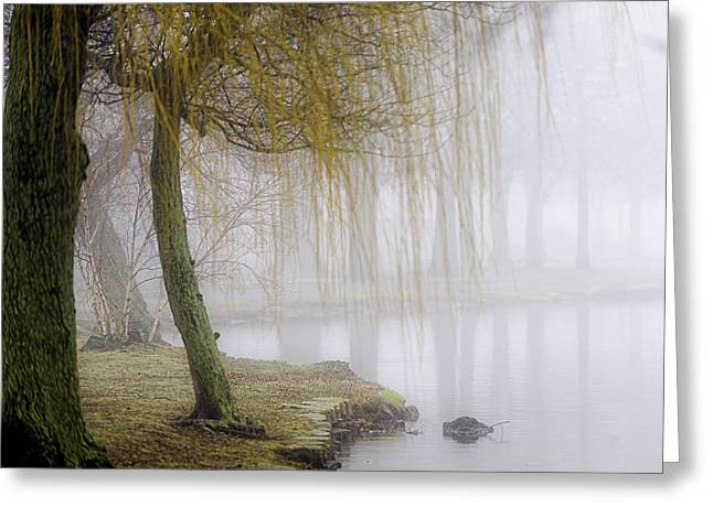 Foggy Lake Morning Greeting Card by Vicki Jauron