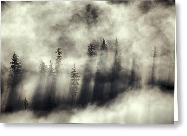 Mystical Landscape Greeting Cards - Foggy Landscape Stephens Passage Greeting Card by Ron Sanford