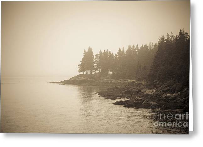 Maine Beach Greeting Cards - Foggy Maine Coast Greeting Card by Diane Diederich