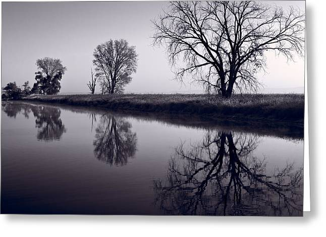Wildlife Refuge. Greeting Cards - Foggy Morn BW Greeting Card by Steve Gadomski