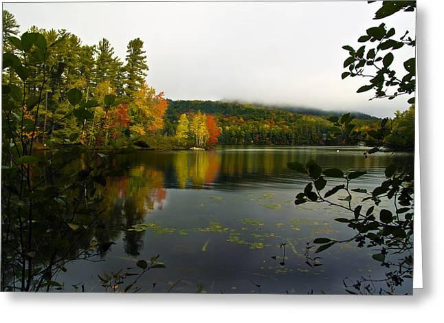 Lake Paradox Greeting Cards - Foggy Morning Greeting Card by David Simons