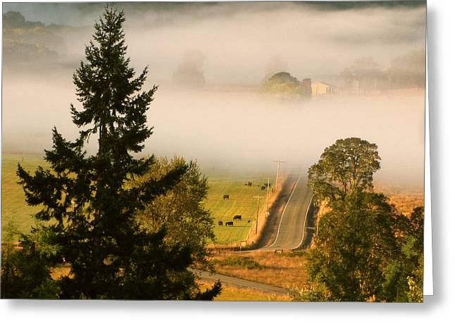 Foggy Morning Drive Greeting Card by Katie Wing Vigil