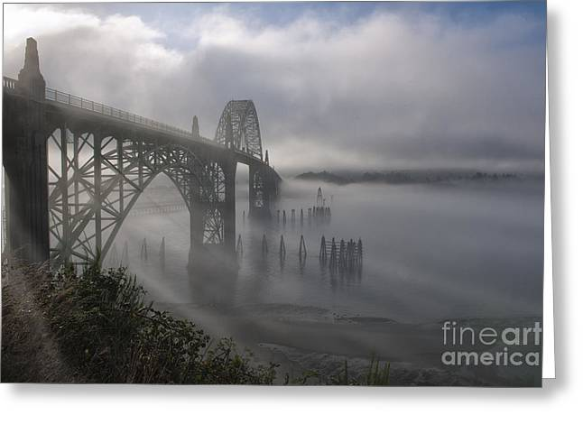 Haze Greeting Cards - Foggy Morning in Newport Greeting Card by Sandra Bronstein