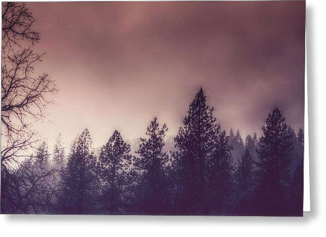 Melanie Lankford Photography Greeting Cards - Foggy Morning Greeting Card by Melanie Lankford Photography