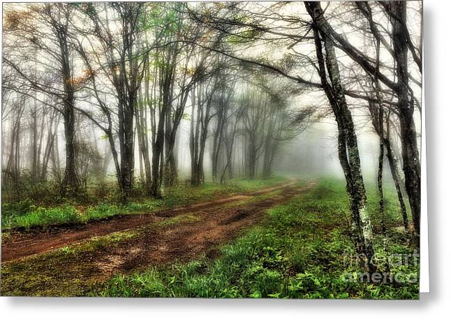 National Commercial Greeting Cards - Foggy Morning on the Cherohala Skyway in North Carolina I Greeting Card by Dan Carmichael