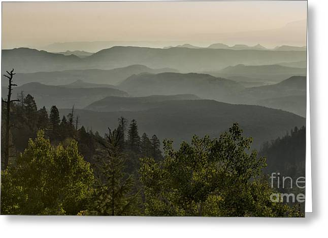 Foggy Morning Over Waterpocket Fold Greeting Card by Sandra Bronstein