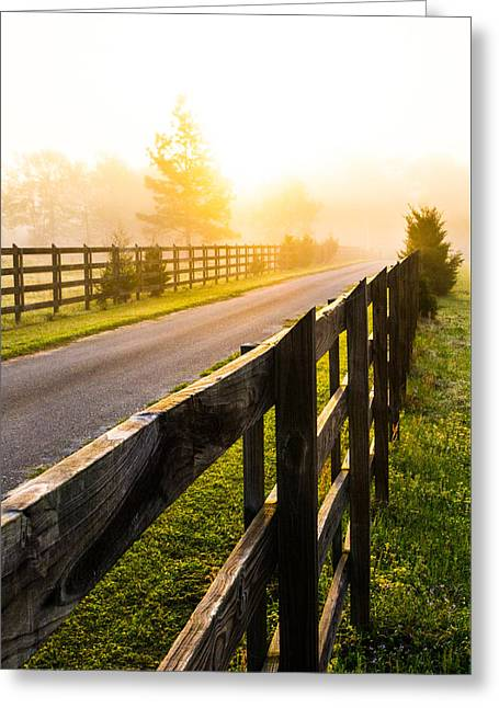 Dazed Greeting Cards - Foggy Morning Greeting Card by Shelby  Young