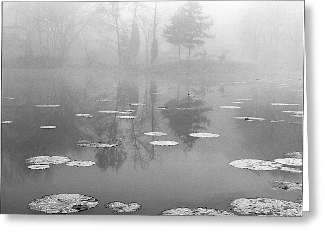 Foggy Morning Greeting Card by Wendell Thompson