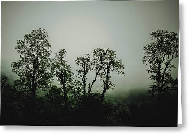 John Haldane Greeting Cards - Foggy Mountain Morning at the Meadows of Dan Greeting Card by John Haldane