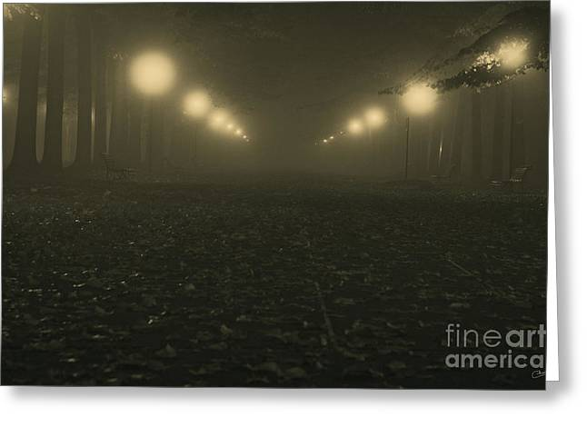 Thick Fog Greeting Cards - Foggy night in a park Greeting Card by Prints of Italy