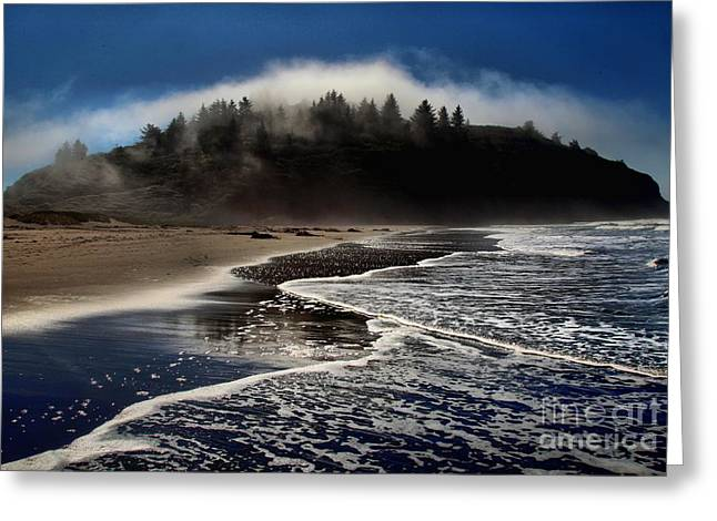 Foggy Beach Greeting Cards - Foggy Pacific Reflections Greeting Card by Adam Jewell