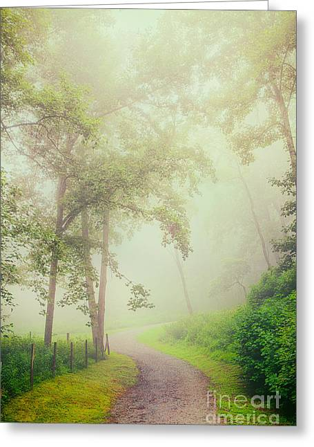 Abstract Mountains Framed Prints Greeting Cards - Foggy Path - Blue Ridge Parkway Greeting Card by Dan Carmichael