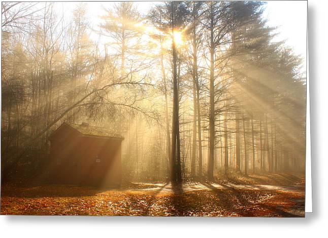 Foggy Rays And Forest Cabin Greeting Card by John Burk