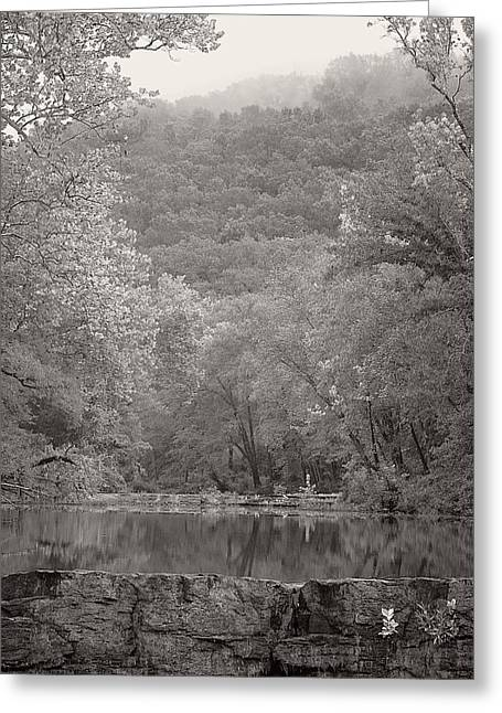 Crawford County Arkansas Greeting Cards - Foggy Reflections on Lee Creek Greeting Card by Terry Olsen