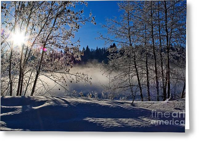 The North Greeting Cards - Foggy River Morning Greeting Card by Terry Elniski