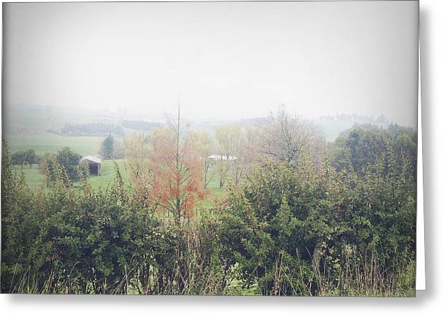 Foggy Landscape Greeting Cards - Foggy scene Greeting Card by Les Cunliffe