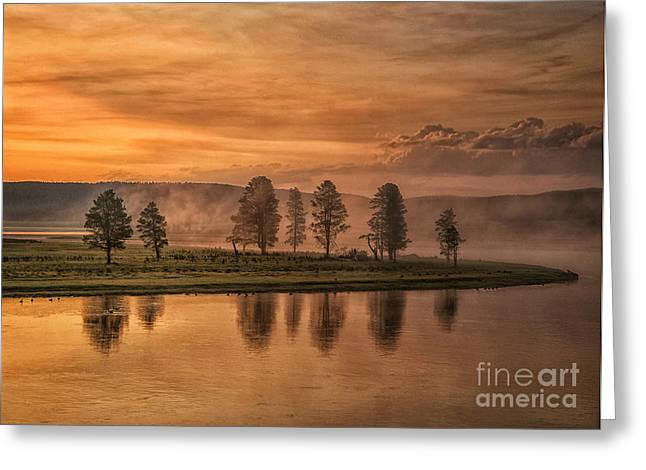 Reflectio Greeting Cards - Foggy sunrise Greeting Card by Claudia Kuhn