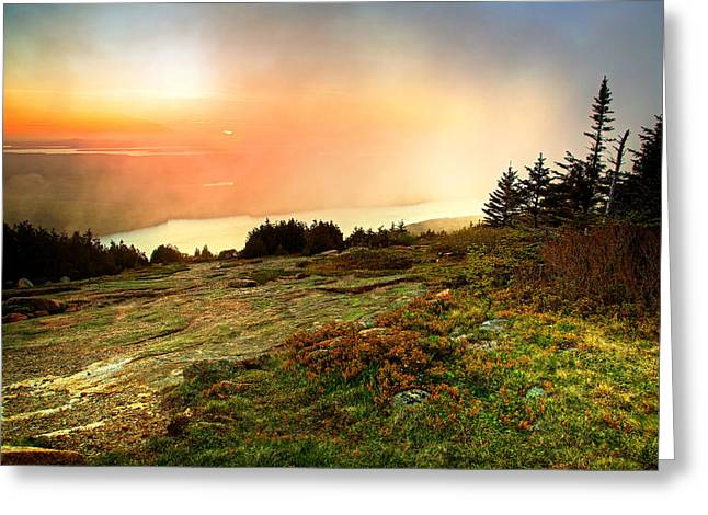 Pond In Park Greeting Cards - Foggy Sunset Greeting Card by Dave Files
