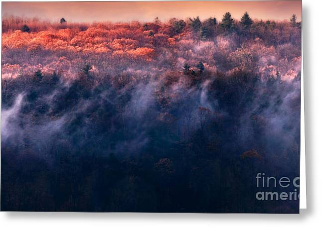 Natures Beauty Greeting Cards - Foggy Sunset Greeting Card by HD Connelly