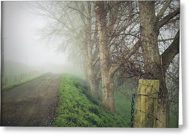 Foggy. Mist Greeting Cards - Foggy trail Greeting Card by Les Cunliffe