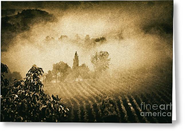 Foggy Tuscany Greeting Card by Silvia Ganora