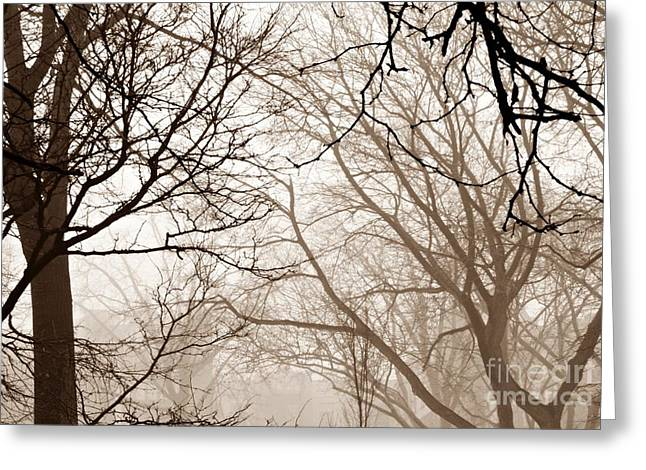 Brnch Greeting Cards - Foggy Winter Afteroon in Sepia Greeting Card by Sarah Loft