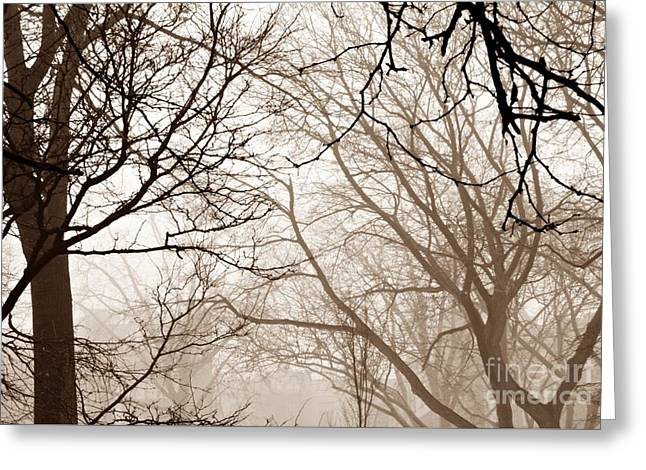 Brnch Greeting Cards - Foggy Winter Afternoon in Sepia Greeting Card by Sarah Loft