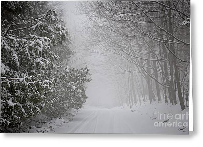Driving Greeting Cards - Foggy winter road Greeting Card by Elena Elisseeva