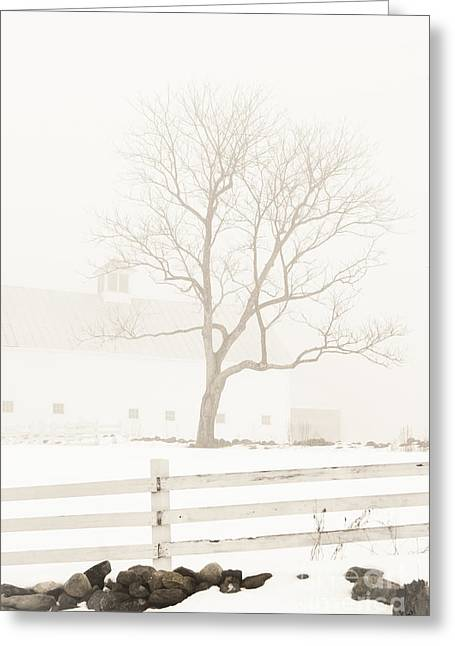 Maine Farms Greeting Cards - Foggy Winters Day Greeting Card by Alana Ranney