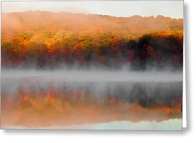 Turning Leaves Greeting Cards - Foilage in the Fog Greeting Card by Anthony Sacco