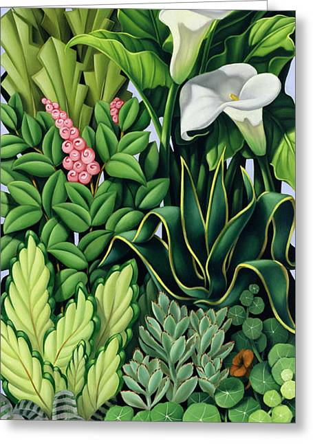 Garden Greeting Cards - Foliage Greeting Card by Catherine Abel