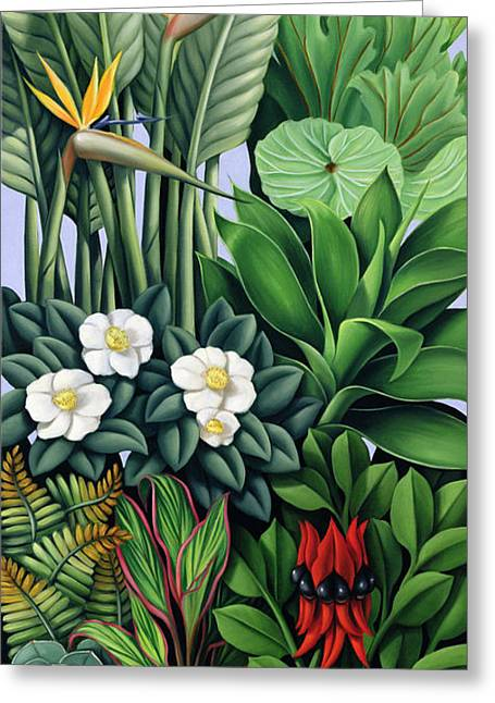 Catherine Greeting Cards - Foliage II Greeting Card by Catherine Abel