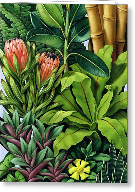 Arum Lily Greeting Cards - Foliage III Greeting Card by Catherine Abel