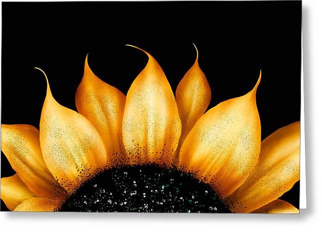 Halloween Folk Art Greeting Cards - Folk Art Sunflower Greeting Card by Brenda Bryant