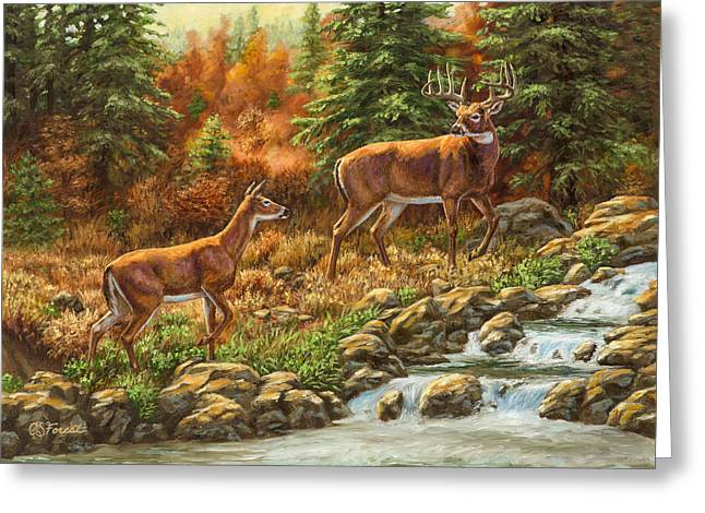 Waterfall Greeting Cards - Whitetail Deer - Follow Me Greeting Card by Crista Forest