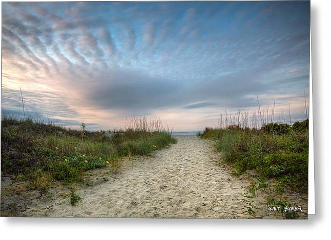Charleston Pathway Greeting Cards - Follow Me Greeting Card by Walt  Baker