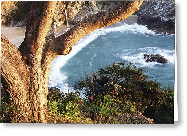 Coast Hwy Ca Greeting Cards - Follow The Curve Greeting Card by Alan Kepler