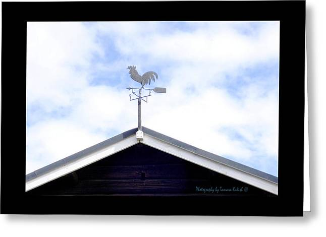 Weathervane Greeting Cards - Follow the Direction Your Heart Leads You Greeting Card by Tamara Kulish