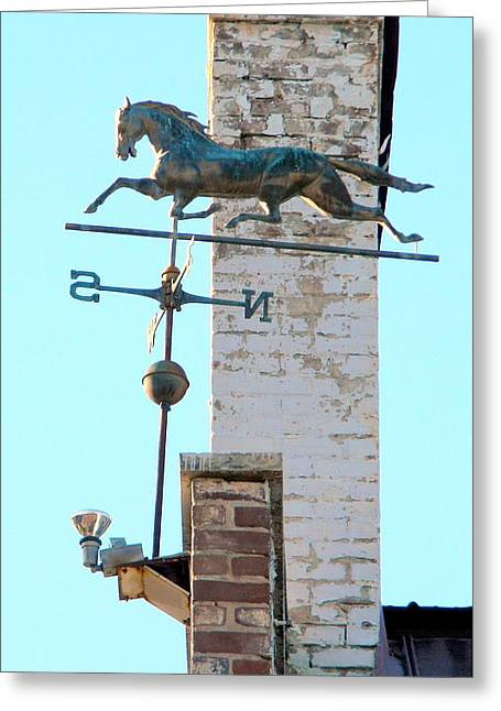 Weathervane Greeting Cards - Follow the Horse 4 Greeting Card by Kathy Barney