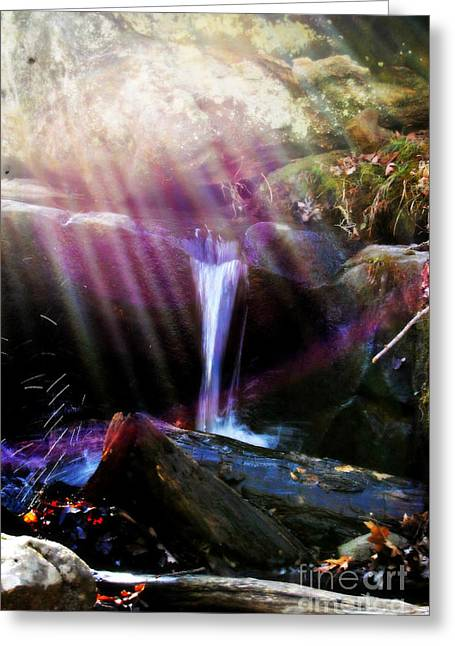 Follow  The Light Greeting Card by Peggy  Franz