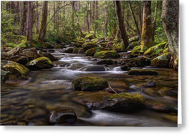 Gatlinburg Tennessee Greeting Cards - Follow the Light Greeting Card by Teresa Jack