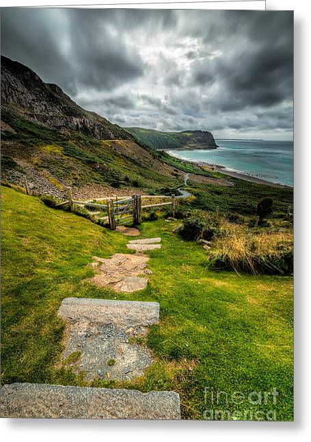 Beach Cottage Style Greeting Cards - Follow The Path Greeting Card by Adrian Evans