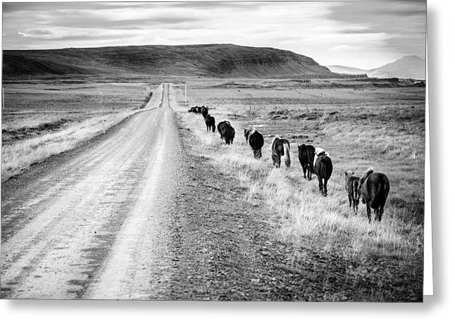 Gravel Road Greeting Cards - Follow the road Greeting Card by Alexey Stiop