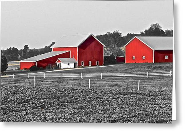 Amish Farms Greeting Cards - Follow the Yellow Dirt Road Greeting Card by Frozen in Time Fine Art Photography