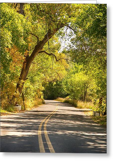 Double Yellow Line Greeting Cards - Follow the Yellow Lines Greeting Card by James BO  Insogna