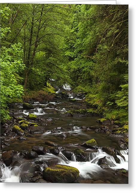 Flowing Stream Greeting Cards - Follow your Dreams Greeting Card by Andrew Soundarajan