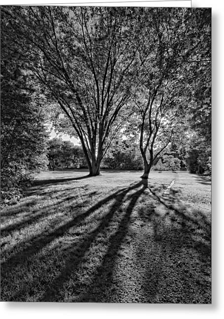 Slide Prints Greeting Cards - Follow Your Dreams monochrome Greeting Card by Steve Harrington