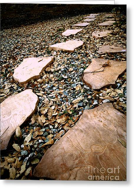 Stepping Stones Greeting Cards - Follow Your Path Greeting Card by Cheryl Young