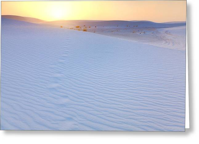Sand Pattern Greeting Cards - Following Sunset Greeting Card by Alexey Stiop